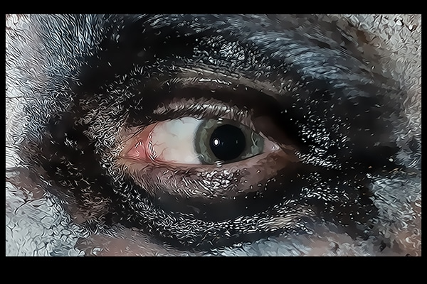 Experimental Eye