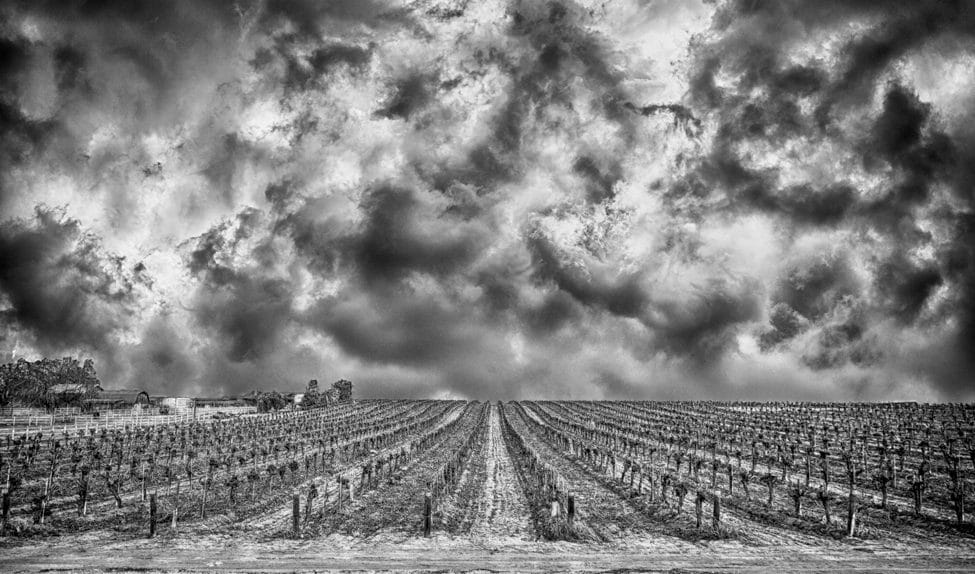 Calm Beneath the Storm (Black & White Version)