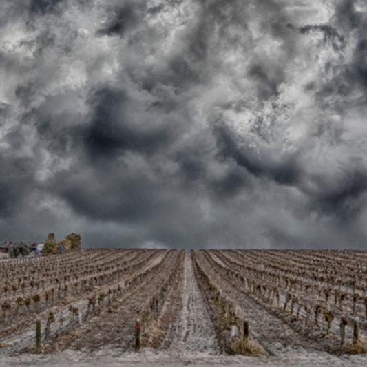 Agricultural Landscapes Portfolio Image
